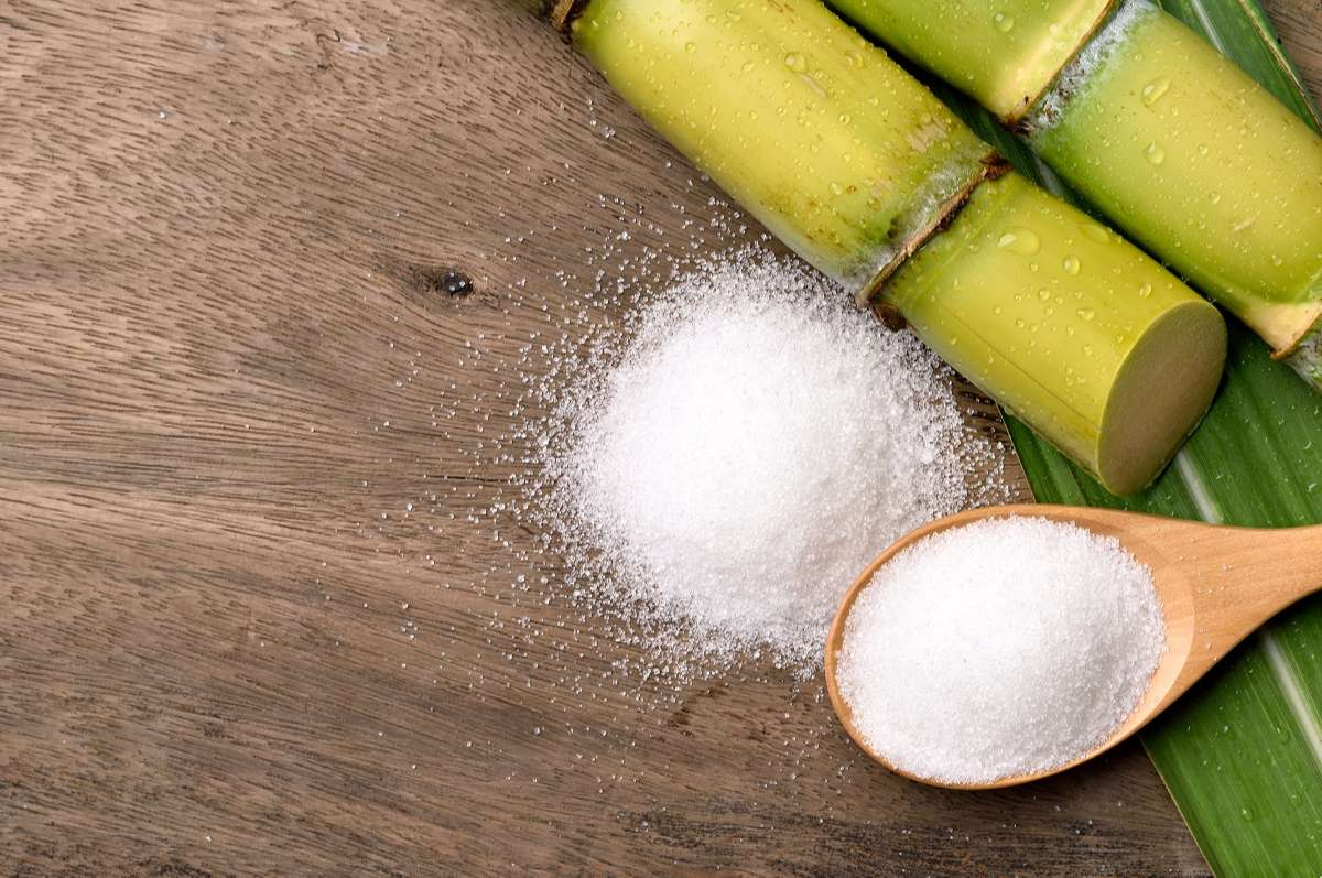 Investigation against Evasion of Trade Remedies for a Cane Sugar Products from Thailand.